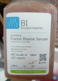 间充质干细胞专用杰克棋牌手机下载Certified Foetal Bovine Serum (FBS) Qualified for Mesenchymal Cells
